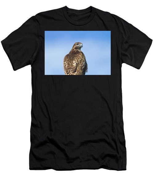 Red-tailed Hawk Perched Looking Back Over Shoulder Men's T-Shirt (Athletic Fit)