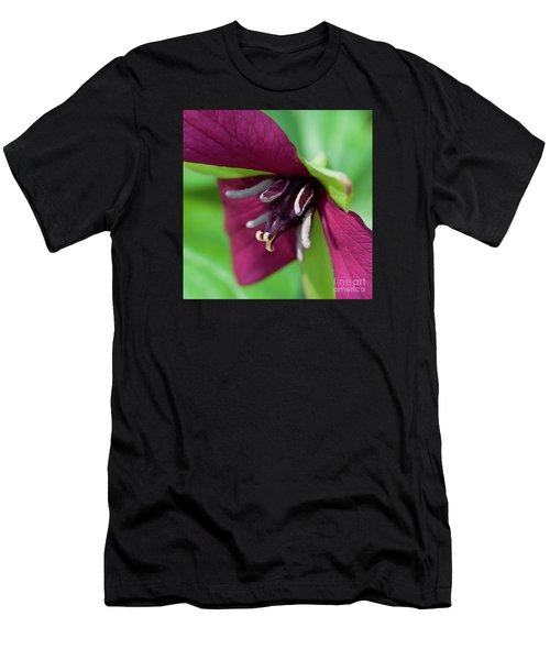 Red Trillium.. Men's T-Shirt (Athletic Fit)