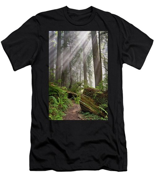 Redwood Light Men's T-Shirt (Athletic Fit)