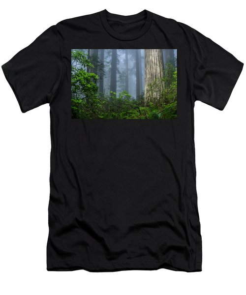 Redwoods In Blue Fog Men's T-Shirt (Athletic Fit)