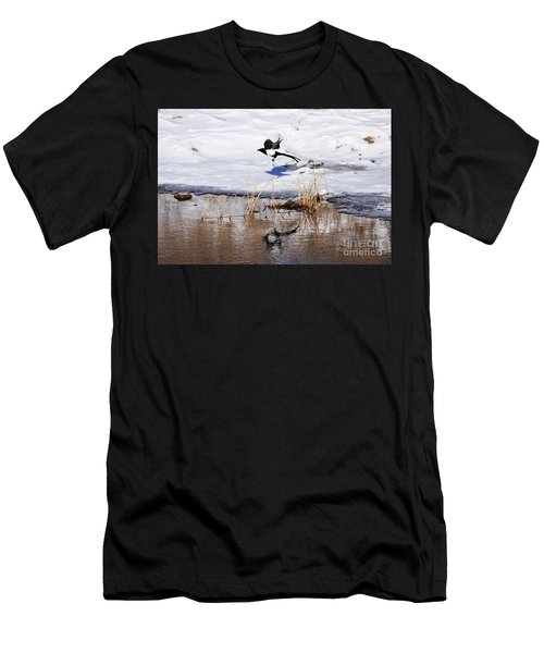 Reflecting Magpie Men's T-Shirt (Athletic Fit)