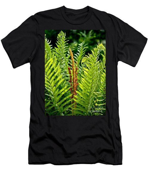Refreshing Green Fern Wall Art Men's T-Shirt (Athletic Fit)