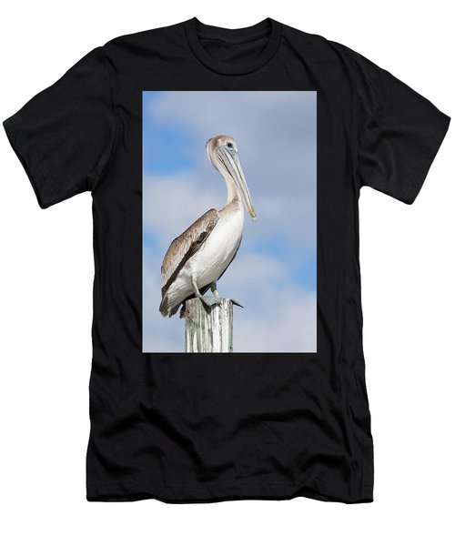 Regal Bird Men's T-Shirt (Athletic Fit)