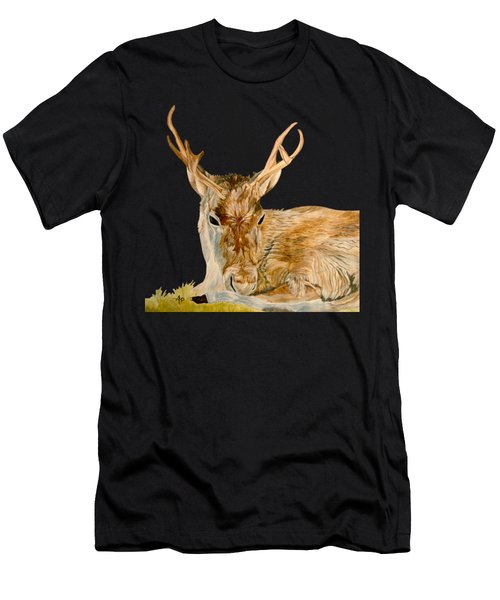 Reindeer Men's T-Shirt (Athletic Fit)