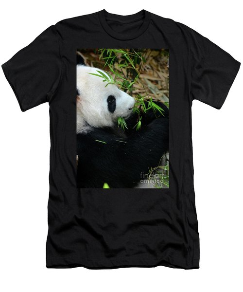 Relaxed Panda Bear Eats With Green Leaves In Mouth Men's T-Shirt (Athletic Fit)
