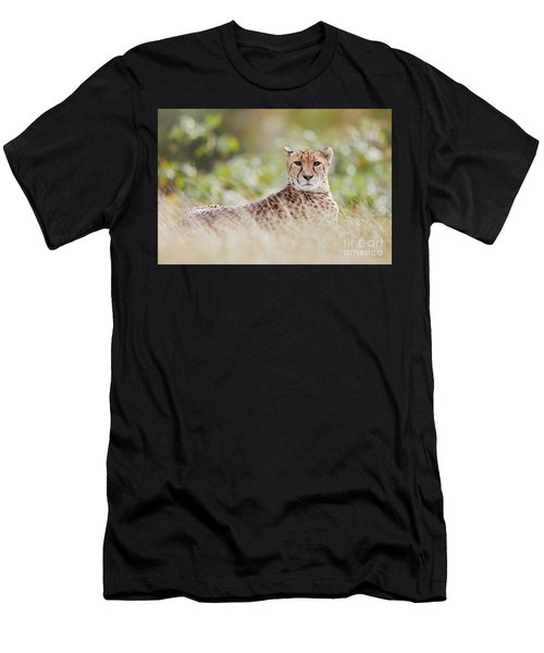 Men's T-Shirt (Athletic Fit) featuring the photograph Resting Cheetah by Nick Biemans
