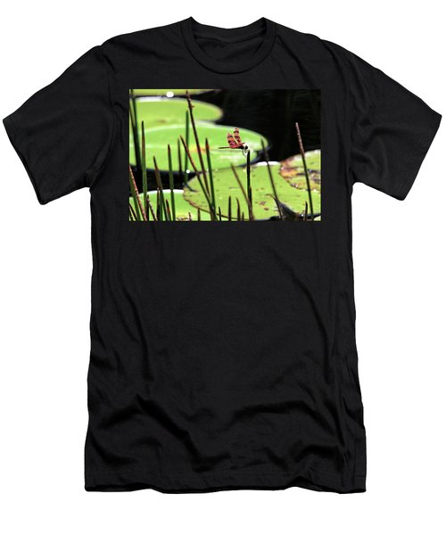 Resting Dragonfly Men's T-Shirt (Athletic Fit)