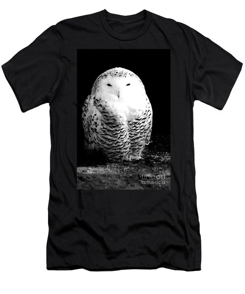 Resting Snowy Owl Men's T-Shirt (Slim Fit) by Darcy Michaelchuk
