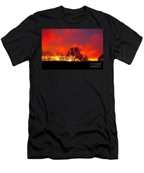 Revelation Men's T-Shirt (Slim Fit) by Diane E Berry