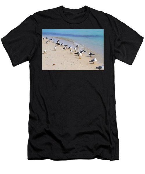 Rhapsody In Seabird Men's T-Shirt (Athletic Fit)
