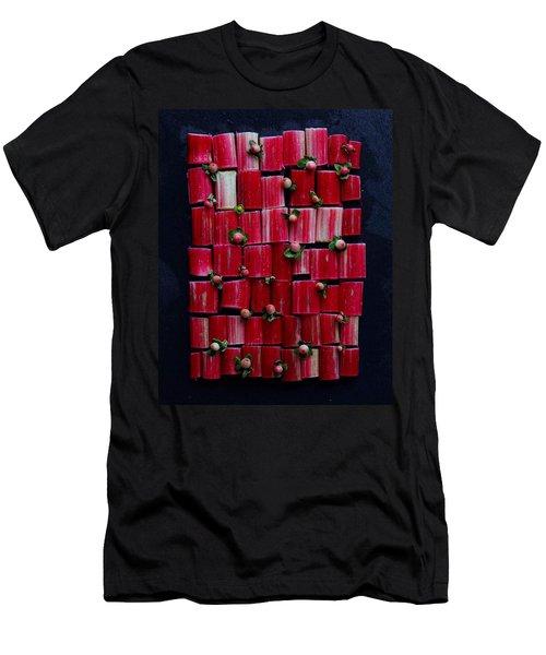 Rhubarb Wall Men's T-Shirt (Athletic Fit)