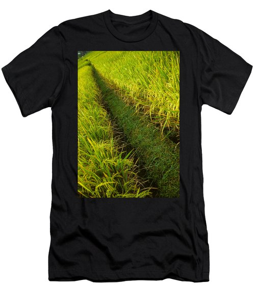 Rice Field Hiking Men's T-Shirt (Athletic Fit)