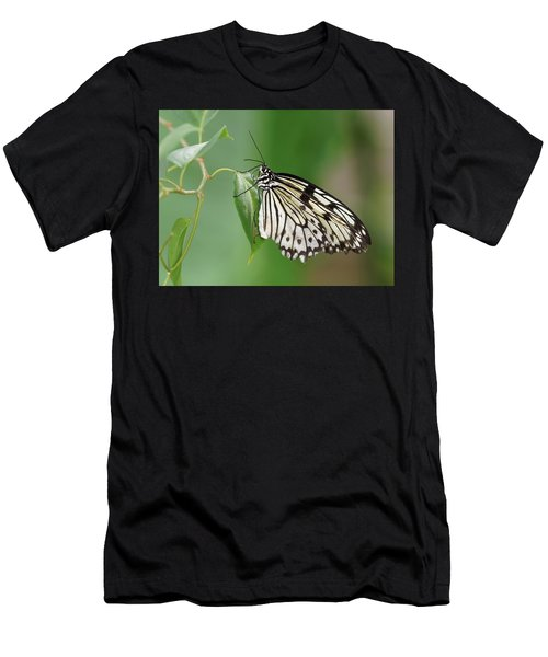 Men's T-Shirt (Athletic Fit) featuring the photograph Rice Paper Butterfly by Paul Gulliver