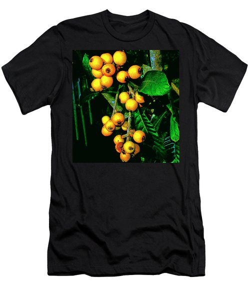 Ripe Loquats Men's T-Shirt (Slim Fit) by Gina O'Brien