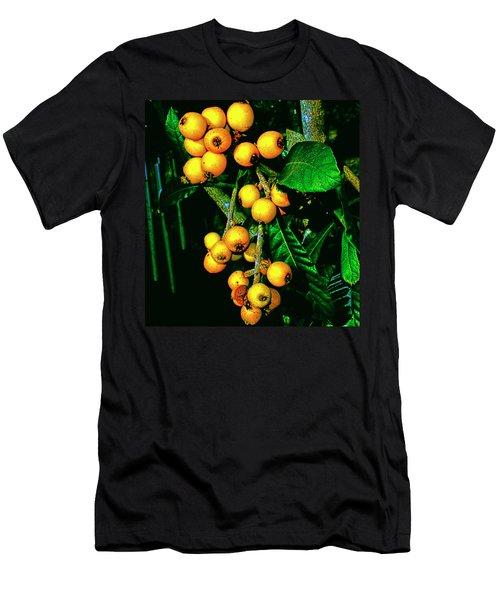 Ripe Loquats Men's T-Shirt (Athletic Fit)