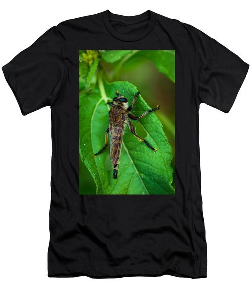 Robber Fly 1 Men's T-Shirt (Athletic Fit)