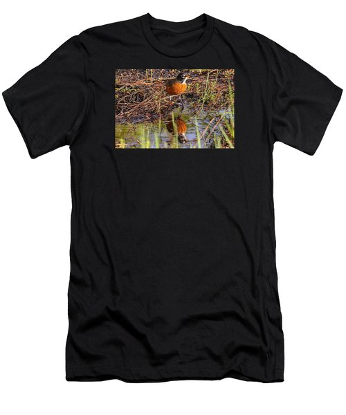 Robin And Reflection Men's T-Shirt (Athletic Fit)