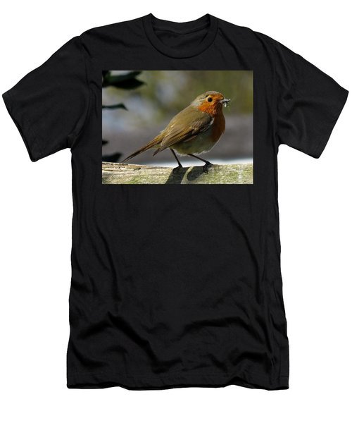 Robin3 Men's T-Shirt (Athletic Fit)