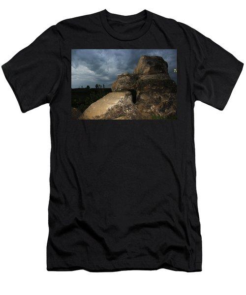 Roche Percee Peak Men's T-Shirt (Athletic Fit)