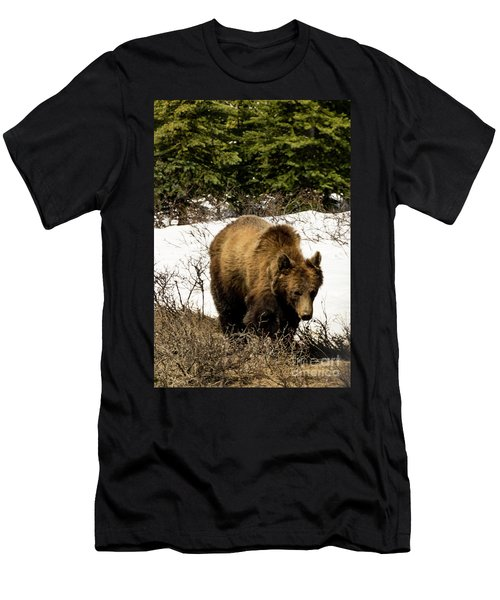 Rockies Grizzly Men's T-Shirt (Athletic Fit)