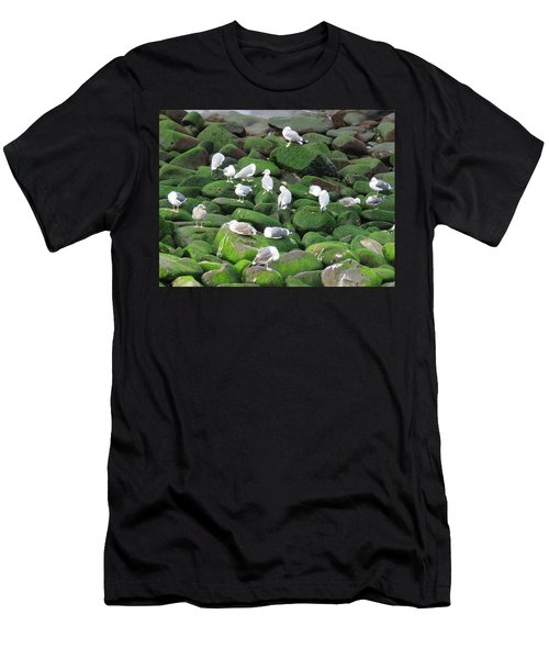 Rocks And Gulls Men's T-Shirt (Athletic Fit)