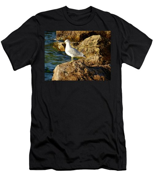 Rocky Waters Men's T-Shirt (Athletic Fit)