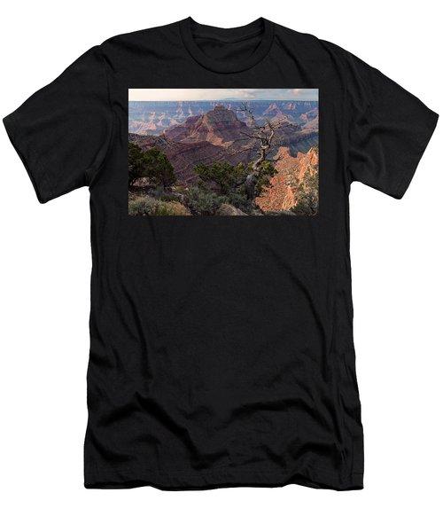 Vishnu Temple Men's T-Shirt (Athletic Fit)