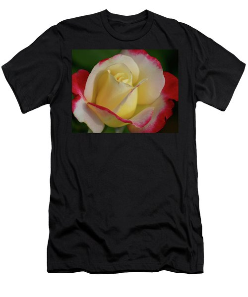 Rose 3913 Men's T-Shirt (Athletic Fit)
