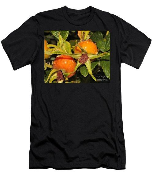 Rose Hips Men's T-Shirt (Athletic Fit)