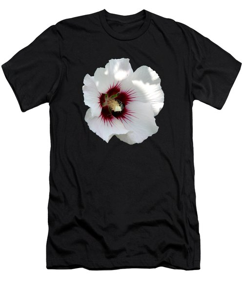 Rose Of Sharon Flower And Bumble Bee Men's T-Shirt (Slim Fit) by Rose Santuci-Sofranko