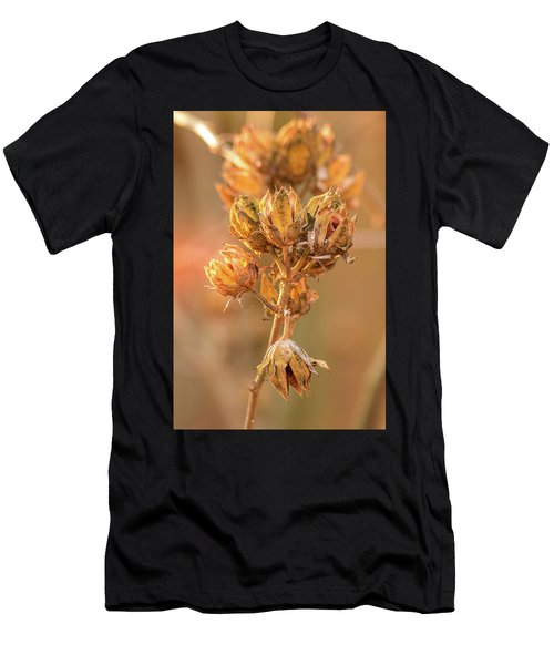Rose Of Sharon In Winter Men's T-Shirt (Athletic Fit)