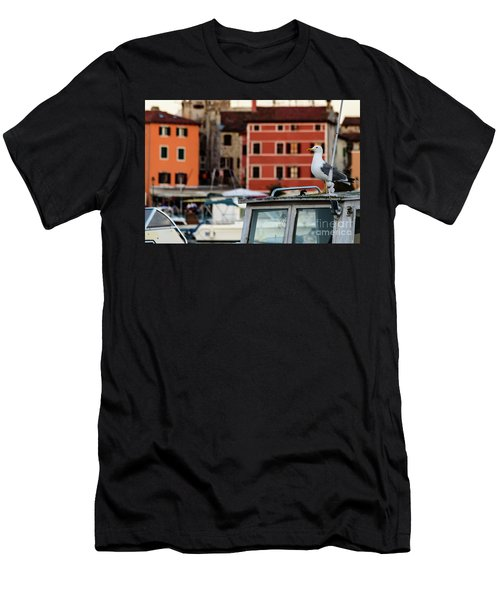 Rovinj Harbor Seagull - Rovinj, Istria, Croatia Men's T-Shirt (Athletic Fit)