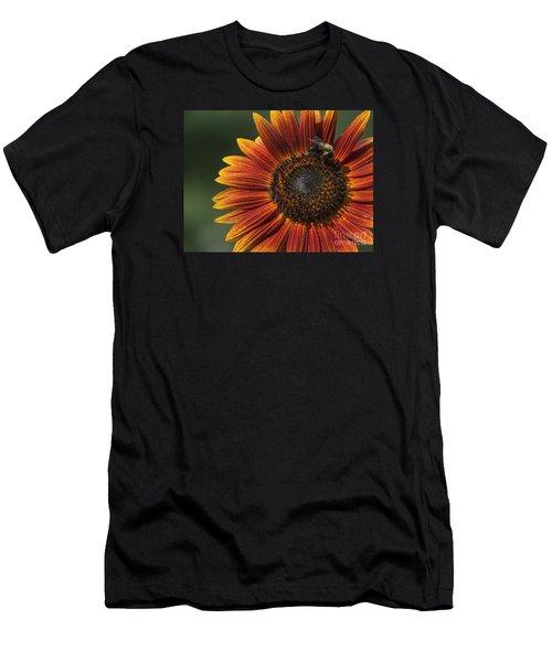 Royal Harvest Men's T-Shirt (Athletic Fit)