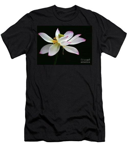 Royal Lotus Men's T-Shirt (Athletic Fit)