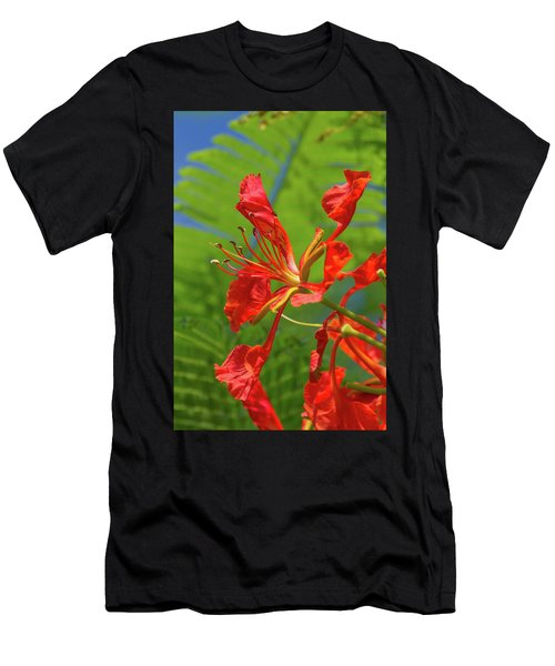 Royal Poinciana Flower Men's T-Shirt (Athletic Fit)