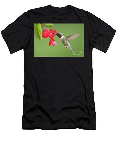 Men's T-Shirt (Slim Fit) featuring the photograph Ruby Throated Hummingbird Feeding On Begonia by Bonnie Barry