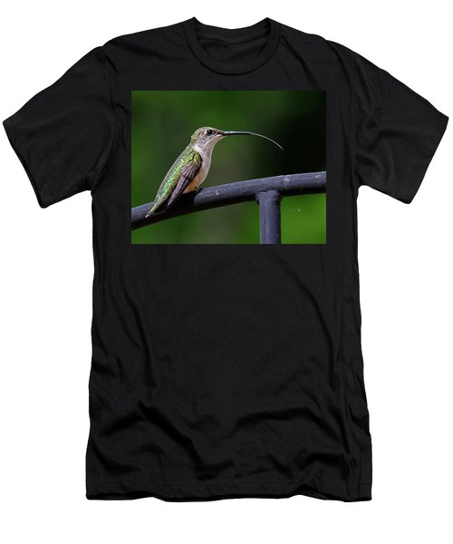 Ruby-throated Hummingbird Tongue Men's T-Shirt (Slim Fit) by Ronda Ryan