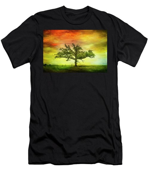 Rushford Tree On 43 Men's T-Shirt (Athletic Fit)