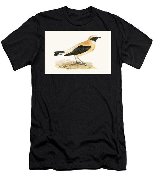 Russet Wheatear Men's T-Shirt (Athletic Fit)