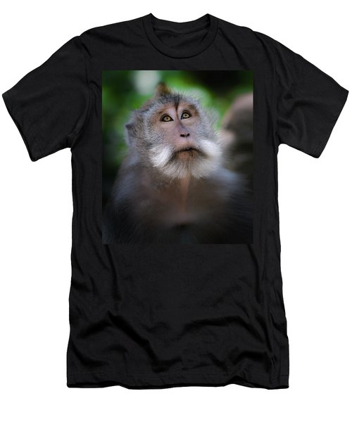 Sacred Monkey Forest Sanctuary Men's T-Shirt (Athletic Fit)