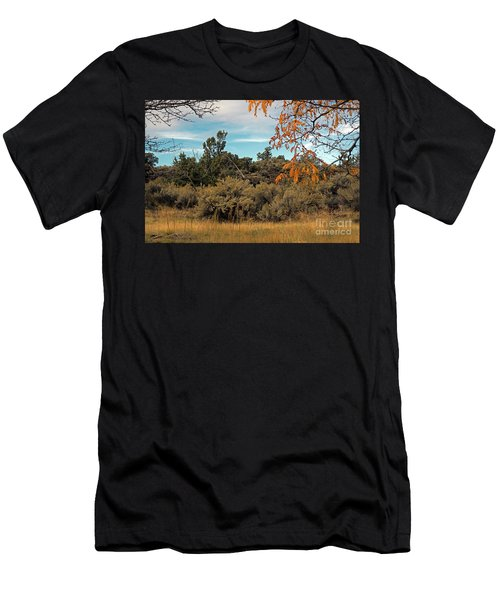 Sagebrush And Lava Men's T-Shirt (Athletic Fit)