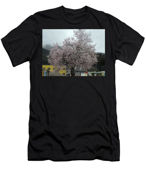 Sakura, Japan's Ephemeral Also Beautiful Flowers Men's T-Shirt (Athletic Fit)