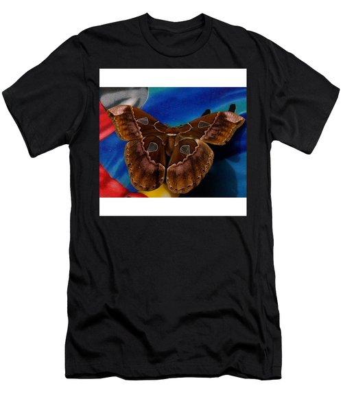 Sakura  From Dreaming My Animal Men's T-Shirt (Athletic Fit)