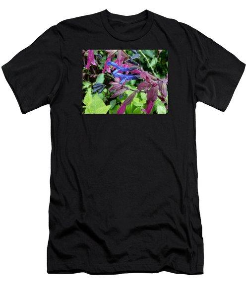 Salvia Men's T-Shirt (Slim Fit) by Tim Good