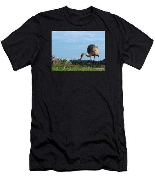 Sandhill Crane 018 Men's T-Shirt (Athletic Fit)