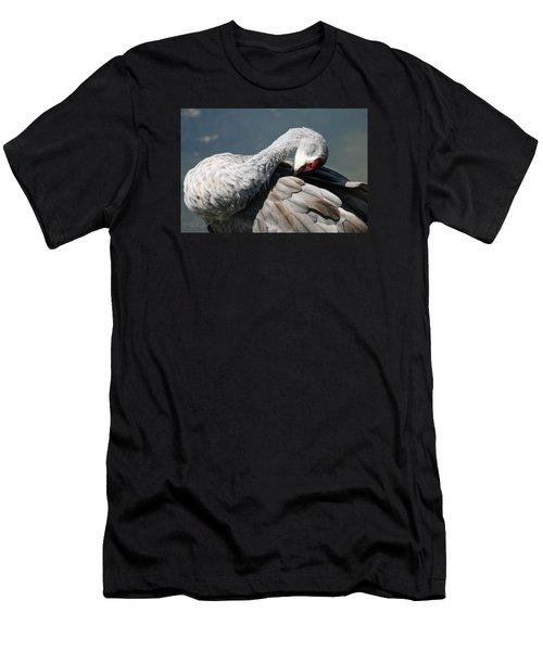 Sandhill Crane 7 Men's T-Shirt (Athletic Fit)