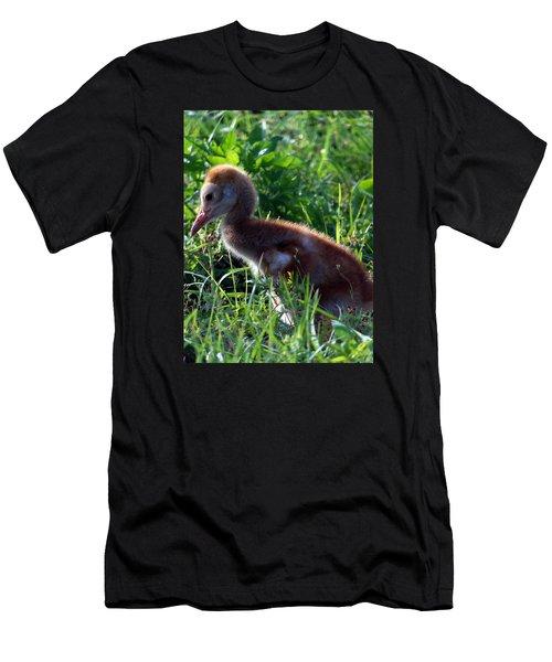 Sandhill Crane Chick 087  Men's T-Shirt (Athletic Fit)