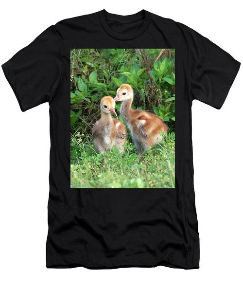 Sandhill Crane Chicks 001 Men's T-Shirt (Athletic Fit)