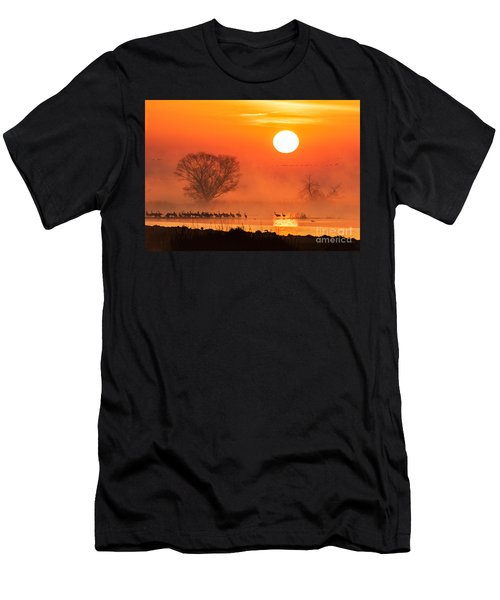 Sandhill Cranes In The Misty Sunrise Men's T-Shirt (Athletic Fit)