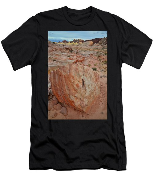 Sandstone Shield In Valley Of Fire Men's T-Shirt (Athletic Fit)